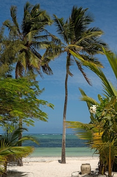 Foto Indigo Beach Zanzibar di Bwejuu
