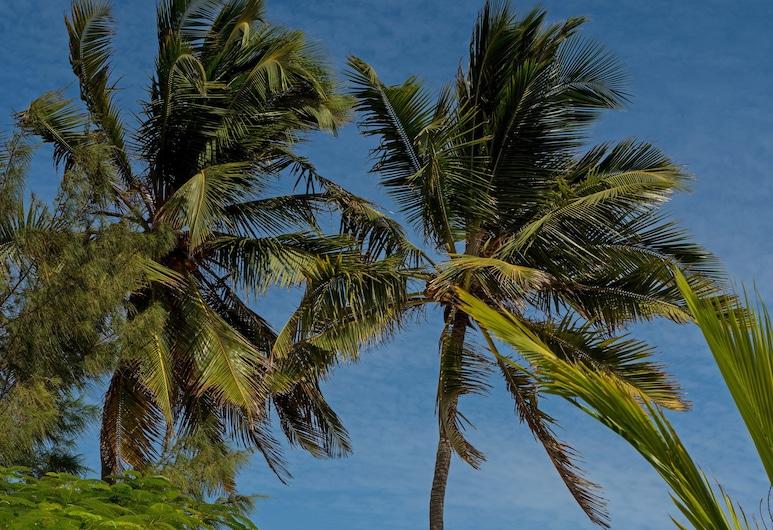 Indigo Beach Zanzibar, Bveju, Terasa / vidinis kiemas
