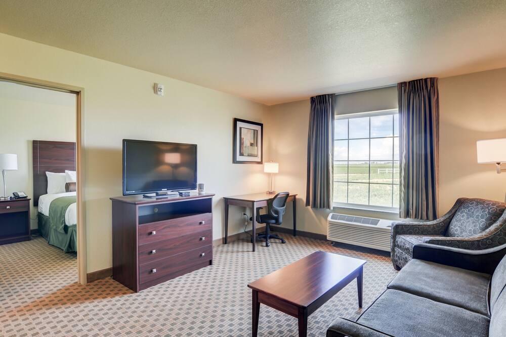 Suite, 1 cama King size con sofá cama, con acceso para silla de ruedas (Roll-in Shower) - Sala de estar