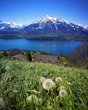 Picture of Bed and Breakfast SwissHut in Sigriswil