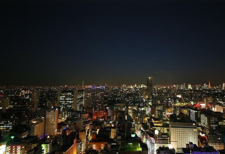 新宿格拉斯麗飯店, 東京, 飯店景觀
