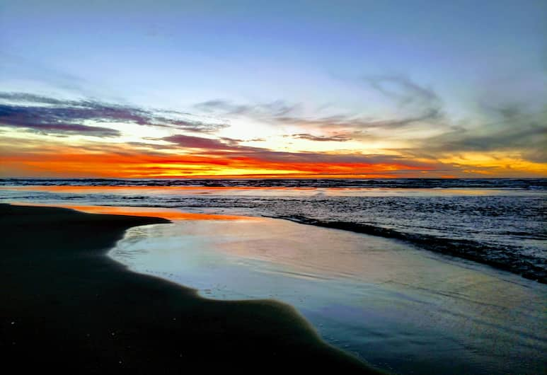 South Jetty RV & Camping Resort, Florence, Beach
