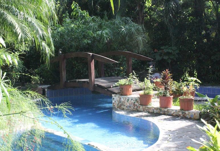 The Lotus Garden, Puerto Viejo de Talamanca, Basen