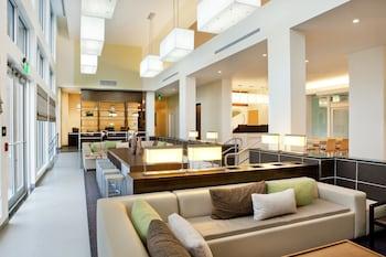 多羅市元素邁阿密多拉飯店的相片