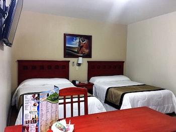 תמונה של Hotel NV Guadalajara בזפופאן
