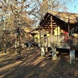 בקתה, 2 חדרי שינה, מטבחון (Cabin, 2 Bedrooms, Kitchenette) - חדר אורחים