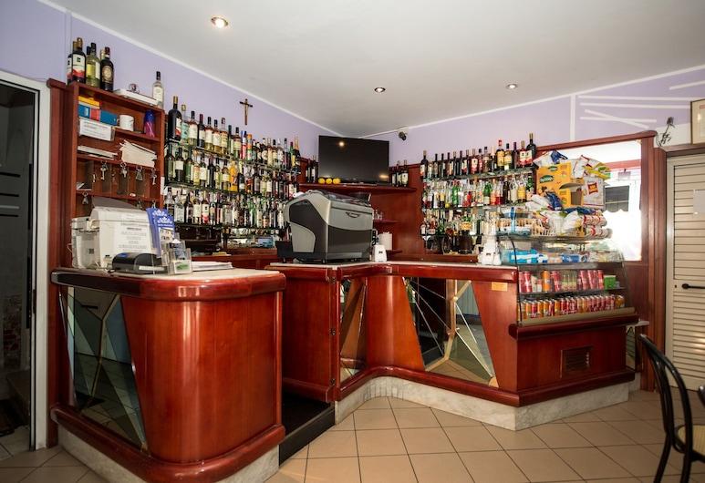 Hotel Terranova, Pisa, Reception