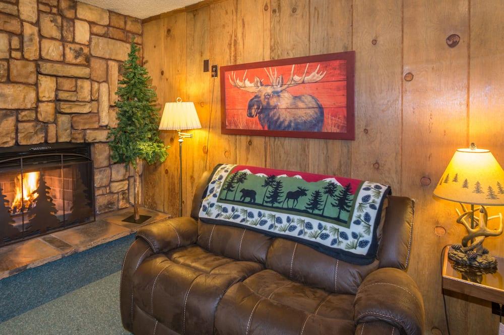Lodge Room with Wood Fireplace - Lodge 113 - 客廳