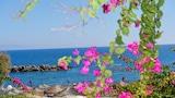 Choose This 2 Star Hotel In Santorini