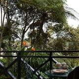 Comfort külaliskorter, 3 magamistoaga, suitsetamine keelatud, vaade kõrgendikule - Vaade aiale