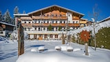 Picture of Hotel Alpenpanorama  in Soell