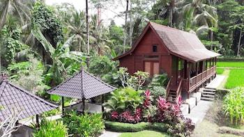 Picture of Beingsattvaa Vegetarian Retreat Villa in Ubud