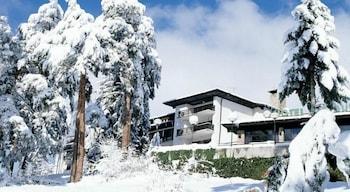 Picture of Hotel Bor in Samokov
