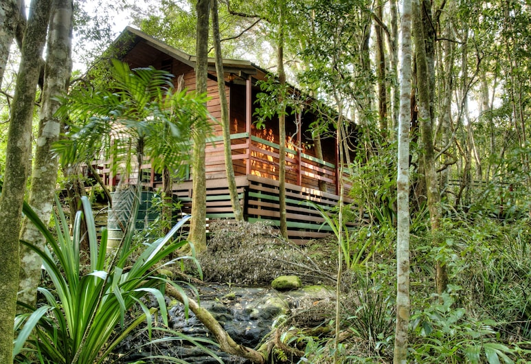 The Mouses House Rainforest Retreat, Springbrook, Piscine couverte