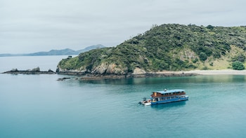 Picture of The Rock Adventure Cruise in Paihia