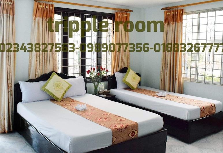 Phong Nha Hotel Hue, Hue, Štandardná izba, 2 jednolôžka, Hosťovská izba