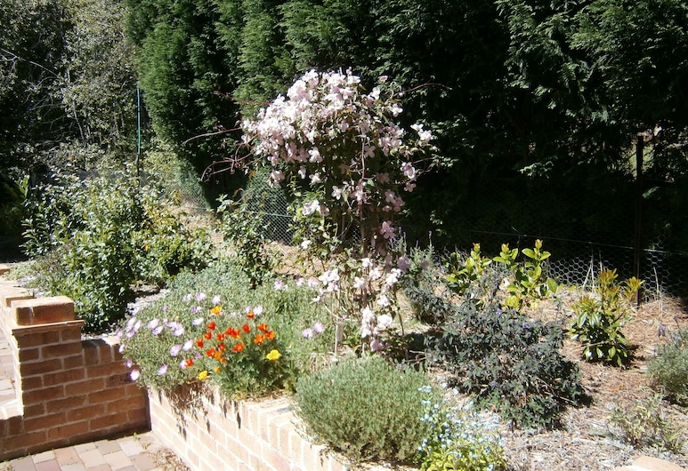 Darnell Bed & Breakfast, Mittagong, Garden