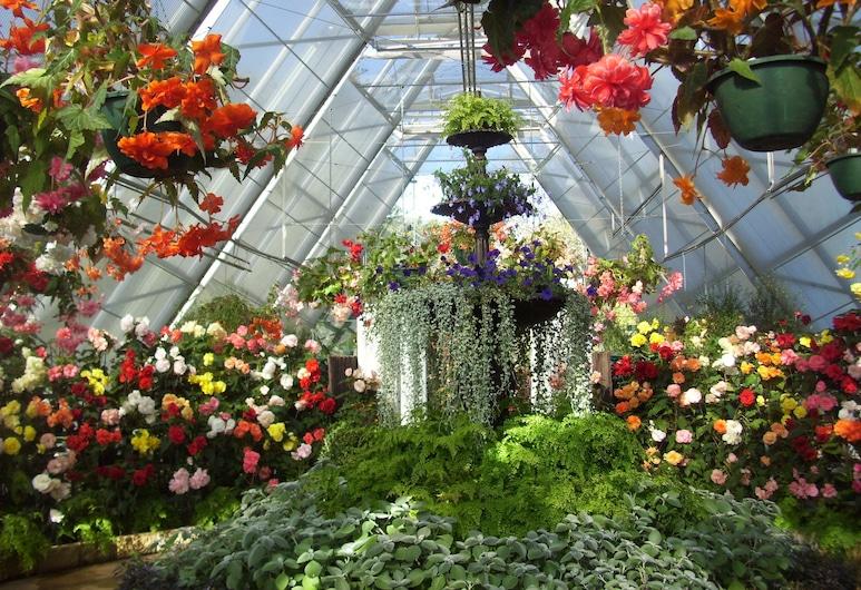بالارات ترانكواليتي كوتيدجز, نيووينغتون, حديقة