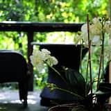 Phòng Suite Cao cấp, 1 phòng ngủ, Ban công (Rainforest Luxury Villa) - Ban công