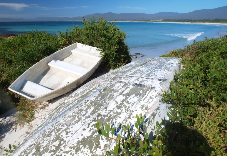 Seymour Waves, Seymour, Playa