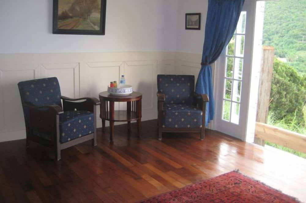 Superior Room, 1 King Bed (Dutch Room) - Living Area