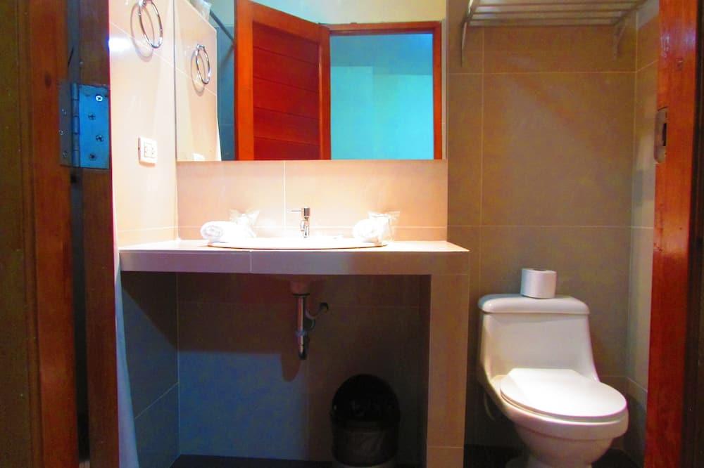 Kambarys su pagrindiniais patogumais, 1 standartinė dvigulė lova - Vonios kambarys