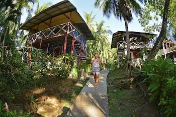 Fotografia hotela (Poor Man's Paradise) v meste Drake Bay