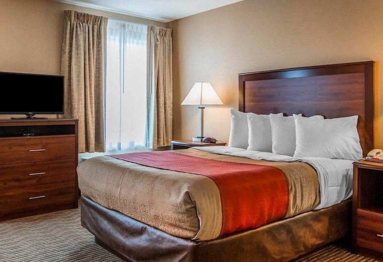 MainStay Suites, Grand Island, Suite, 1 queensize bed met slaapbank, niet-roken, Kamer