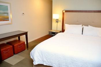 德蘭希爾頓德蘭漢普頓酒店及漢普頓恒庭酒店的圖片