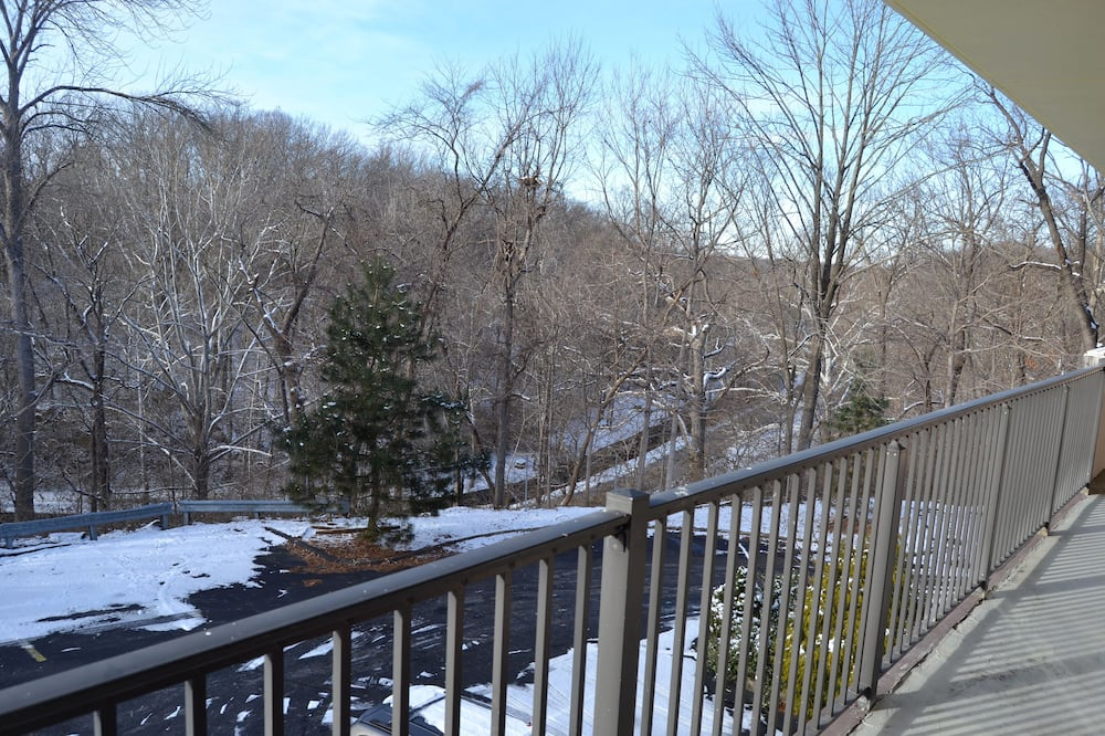 Camera Standard, 1 letto queen, frigorifero, vista parco - Vista balcone