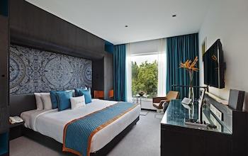 哥印拜陀哥印拜陀公園邊區酒店的圖片