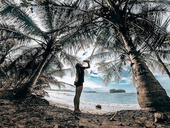 תמונה של Selina Bocas del Toro בבוקס דל טורו