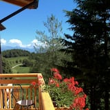 Номер «Делюкс» - Вид з балкона