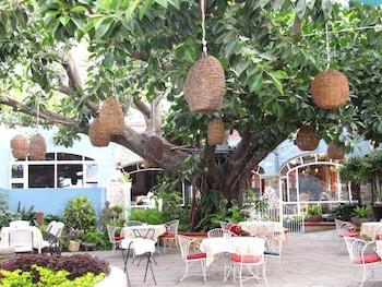 阿西西拉努艾瓦波薩達飯店的相片