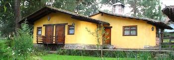 Mazamitla bölgesindeki Cabañas Lomas Verdes resmi