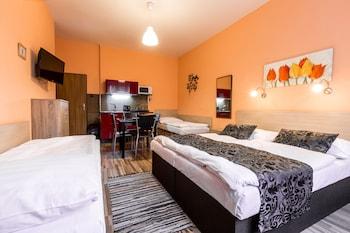 Slika: Rezidence Davids ‒ Prag