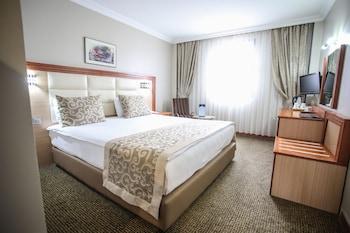 安卡拉阿爾迪諾 Spa 飯店的相片