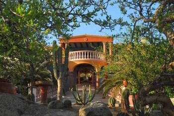 Picture of Villa del Faro in Vinorama