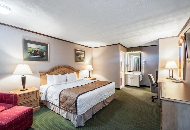 罗德威套房酒店, 查尔斯镇, 标准房, 1 张特大床, 吸烟房, 客房