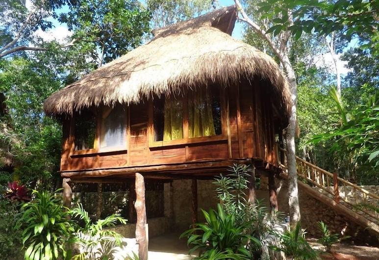 Casa Mango, Macario Gomez