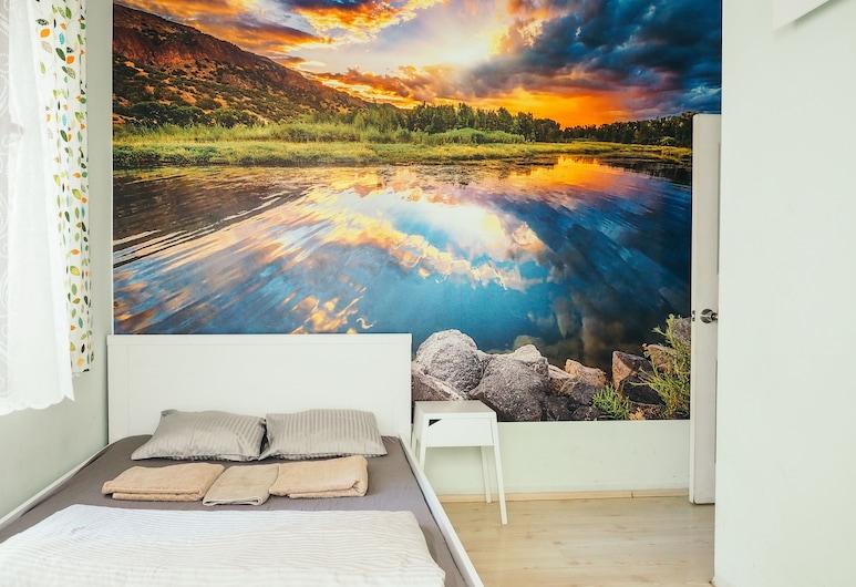 Deeps Hostel, Ankara, Standard Tek Büyük Yataklı Oda, 1 Çift Kişilik Yatak, Oda