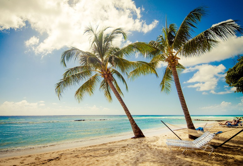 Sugar Bay Barbados - All Inclusive, Гастінгс, Пляж