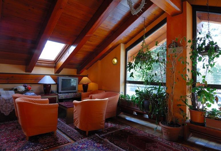 Hotel Bucaneve, Bardonecchia, Living Area