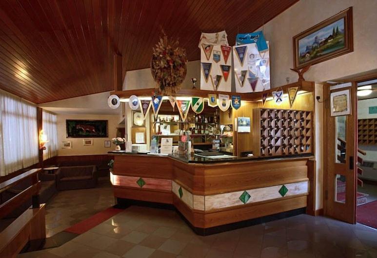 Hotel Davost, Форні-ді-Сопра, Бар готелю