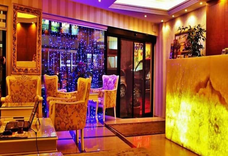 スルタンアフメット ニューポート ホテル, イスタンブール, ロビー ラウンジ