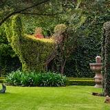Výhľad na záhradu