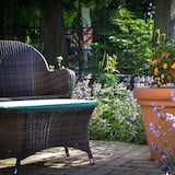 Utsikt mot trädgården