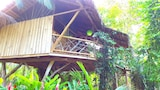 Choose this Cabin / Lodge in Cahuita - Online Room Reservations