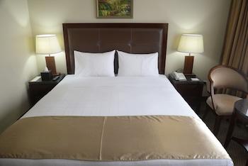 聖地牙哥聖地亞哥史丹福酒店的圖片