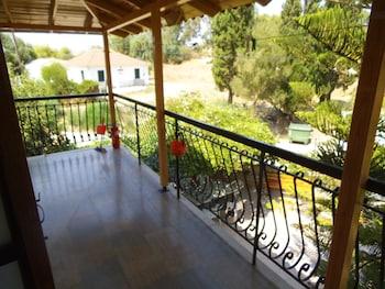 Picture of Villa Xenos Studios & Apartments in Zakynthos